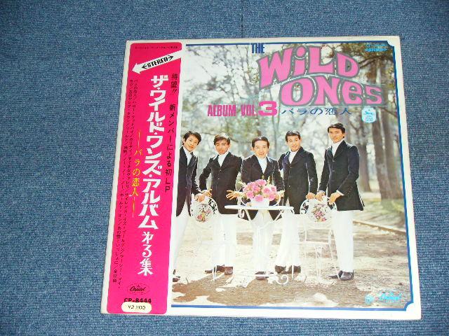 The Wild Ones ザ・ワイルド・ワンズ 青い果実 - 貝殻の夏