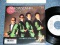 """キング・トーンズ キングトーンズ  THE KING TONES THE KINGTONES ' Back up by 荒川バンド ARAKAWA BAND) - 今夜まで待てそうもない KONYAMADE MATESOUMO NAI / 1987 JAPAN ORIGINAL White Label PROMO Used 7"""" Single"""