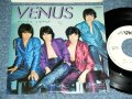 "レオナルド LEONARD -  ヴィーナスVENUS (橋本淳+加瀬邦彦) / 1979 JAPAN ORIGINAL White Label PROMO  Used 7"" Single"