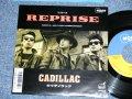 """キャディラック CADILLAC - リプリーズ PEPRISE ( Ex+++/MINT-) / 1988 JAPAN ORIGINAL """"PROMO"""" Used 7""""  Single"""