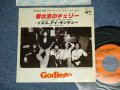 "ゴダイゴ GODIEGO - 君は恋のチェリー CHERRIES WERE MADE FOR EATING イエス、アイ・サンキュー YES, I THANK YOU  (Ex++/Ex++ WOFC, SPRAY MYSTED )  / 1977 JAPAN ORIGINAL ""PROMO""  Used 7"" 45 rpm Single"