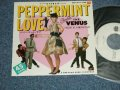 "VENUS ヴィーナス - ペパーミント・ラブ PEPPERMINT LOVE : 夢みるクリスマス (Ex++//Ex+++ STOFC)  / 1981 JAPAN ORIGINAL ""WHITE LABEL PROMO"" Used  7""SingleMINT/MINT"