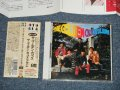 ゴールデン・カップス THE GOLDEN CUPS  - THE GOLDEN CUPS ALBUM ( MINT-/MINT) /  1994 JAPAN Used CD with OBI