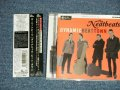 ザ・ニートビーツ THE NEATBEATS -  ダイナミック・ビート・タウン  DYNAMIC BEAT TOWN (MINT-/MINT) / 2012  Japan ORIGINAL  Used CD  with OBI
