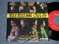 "ソウルフル・ブラッズ SOULFUL BLOODS -  A) 君は君は淋しくないか B) 愛の魂 (Ex-/Ex Looks:Ex++ No Center)  /  JAPAN ORIGINAL ""RED LABEL PROMO""  Used 7"" Single  シングル"