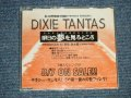"ディキシー・タンタス DIXIE TANTAS - 明日の夢を見るところ (MINT-/MINT) / 1996 JAPAN ORIGINAL ""PROMO Only"" 3 Tracks Maxi-CD"