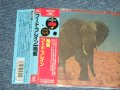 "Food Brain フードブレイン - Social Gathering 晩餐 (1st Album)  (MINT/MIN) / 1989 JAPAN ORIGINAL ""Promo"" Used  CD  with OBI"