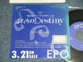 "エポ EPO - A) ふたりのDestiny  B) YOU'RE THE ONLY ONE (Ex++/MINT- STOFC, WOL) / 1989 JAPAN ORIGINAL ""Promo Only"" Used 7"" Single"