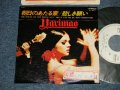 "ハリマオ HARIMAO - A) 朝日の当たる家 THE HOUSE OF THE RISING SUN  B) 悲しき願い DON'T LET ME BE MISUNDERSTOOD (Ex++/MINT-  STOFC, WOFC)   / 1978 JAPAN ORIGINAL ""WHITE LABEL PROMO"" Used  7"" Single"