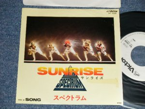 "画像1: スペクトラム SPECTRUM  - A) SUNRISE  B) SONG (Ex+/MINT-) / 1980 JAPAN ORIGINAL ""White Label PROMO"" Used 7"" シングル Single"