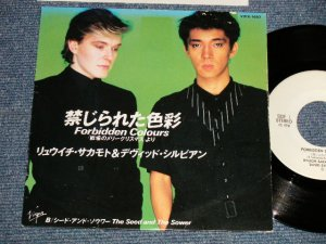 "画像1: 坂本龍一 RYUICHI SAKAMOTO + デヴィッド・シルビアン DAVID SYLVIAN - A) 禁じられた色彩 FORBIDDEN COLOURS  B) THE SEED AND THE SOWER (Ex+/Ex+++) / 1983 JAPAN ORIGINAL ""WHITE LABEL PROMO"" Used 7"" Single"