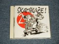 V.A. Various - SKAMIKAZE! Vol.2 (MINT-/MINT) / 2002 FRANCE ORIGINAL Used CD