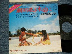 """画像1: OST ジム・ロック・シンガーズ JIM ROCK SINGERS - A) 珊瑚礁よ永遠に  B)ブラザー・シー (Ex+++/Ex+++) / 1977 JAPAN ORIGINAL Used 7"""" 45 rpm Single"""