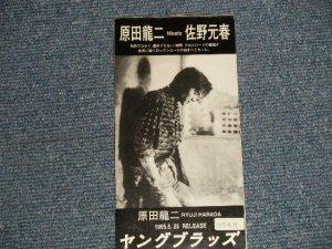"""画像1: 原田龍二 MEETS 佐野元春 RYUJI HARADA meets MOTOHARU SANO - ヤングブラッズ YOUNGBLOODS (Ex/Ex) / 1995 JAPAN ORIGINAL """"PROMO ONLY"""" Used 3"""" 8cm CD Single"""