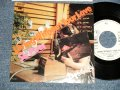 """SHOGUN ショーグン -  A)LIVING WITHOUT YOUR LOVE  B)SIR DEER (Ex+++/MINT- SWOFC, WOL) /1980 JAPAN ORIGINAL """"WHITE LABEL PROMO"""" Used 7"""" Single"""