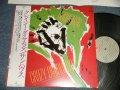 サンハウス SUNHOUSE - クレイジー・ダイヤモンド Crazy Diamonds (MINT/MINT) / 1983 JAPAN ORIGINAL Used LP With OBI