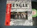 TC Soundtrack 林哲司 TETSUJI HAYASHI ジャッキー・リン&パラビオン -  ジャングル JUNGLE (MINT-/MINT) / 1987 JAPAN ORIGINAL Used LP With OBI