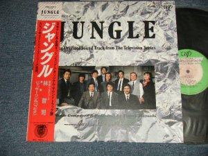 画像1: TC Soundtrack 林哲司 TETSUJI HAYASHI ジャッキー・リン&パラビオン -  ジャングル JUNGLE (MINT-/MINT) / 1987 JAPAN ORIGINAL Used LP With OBI